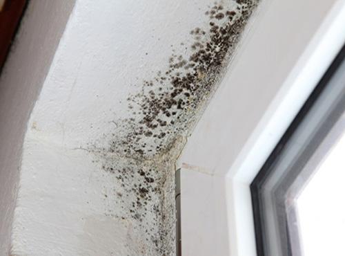 316Что делать чтобы не потели окна зимой дома